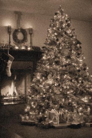 ticovisi n costa rica el primer rbol de navidad en