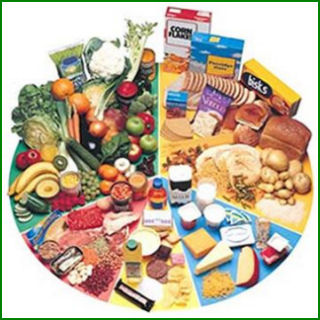 industria alimentario importancia:
